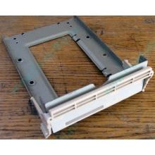 Заглушка для корзины SCSI дисков 55.59903.011 для серверов HP Compaq (Подольск)