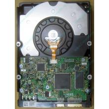 HDD Sun 500G 500Gb в Подольске, FRU 540-7889-01 в Подольске, BASE 390-0383-04 в Подольске, AssyID 0069FMT-1010 в Подольске, HUA7250SBSUN500G (Подольск)