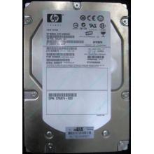 HP 454228-001 146Gb 15k SAS HDD (Подольск)