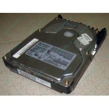Жесткий диск 18.4Gb Quantum Atlas 10K III U160 SCSI (Подольск)