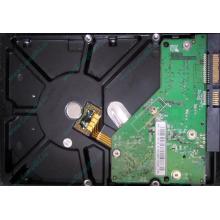 Б/У жёсткий диск 500Gb Western Digital WD5000AVVS (WD AV-GP 500 GB) 5400 rpm SATA (Подольск)